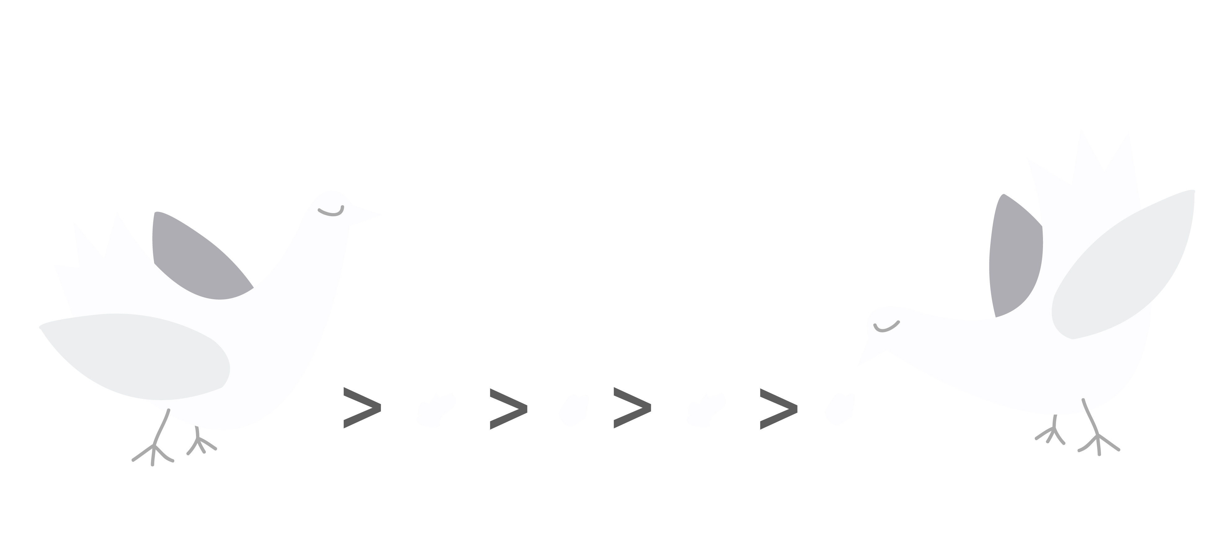 breadcrumbs-pidgeons-awwwards
