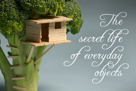 The secret life of everyday objects