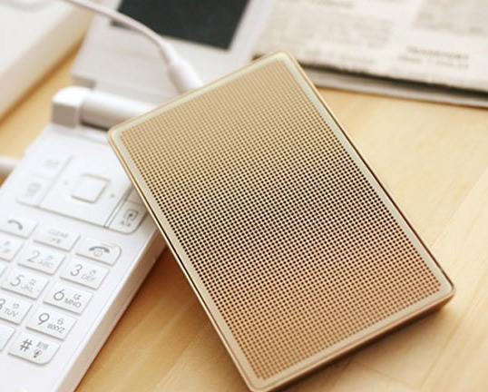 Card-Case Speaker