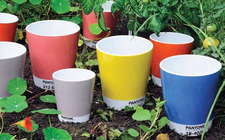 Pantone Flower Pots