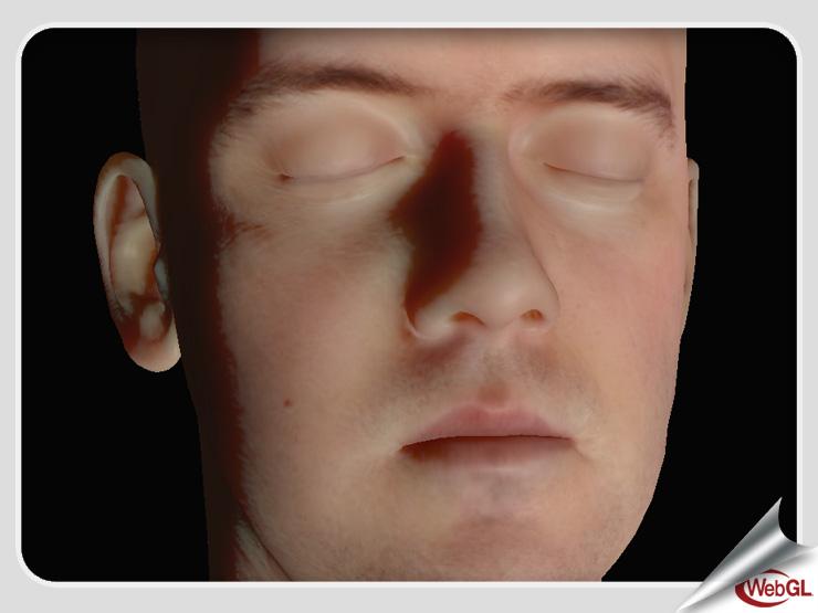 22 Experimental WebGL Demo Examples 09e02ffe1