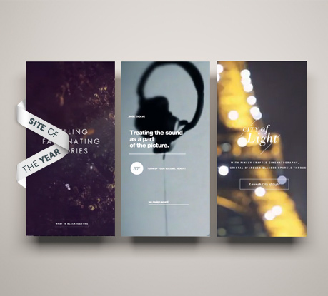 The Awwwards Site of the Year 2012 has been chosen! Ladies and Gentlemen, we are pleased to present...