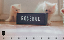 Rosebud corporate site