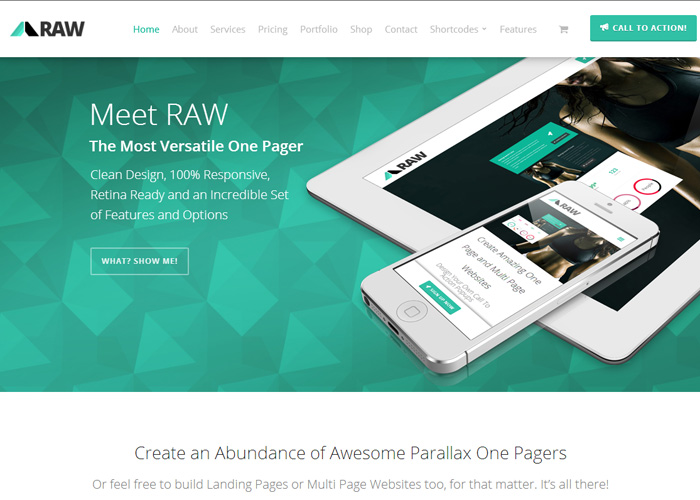 RAW - One Page WordPress Theme