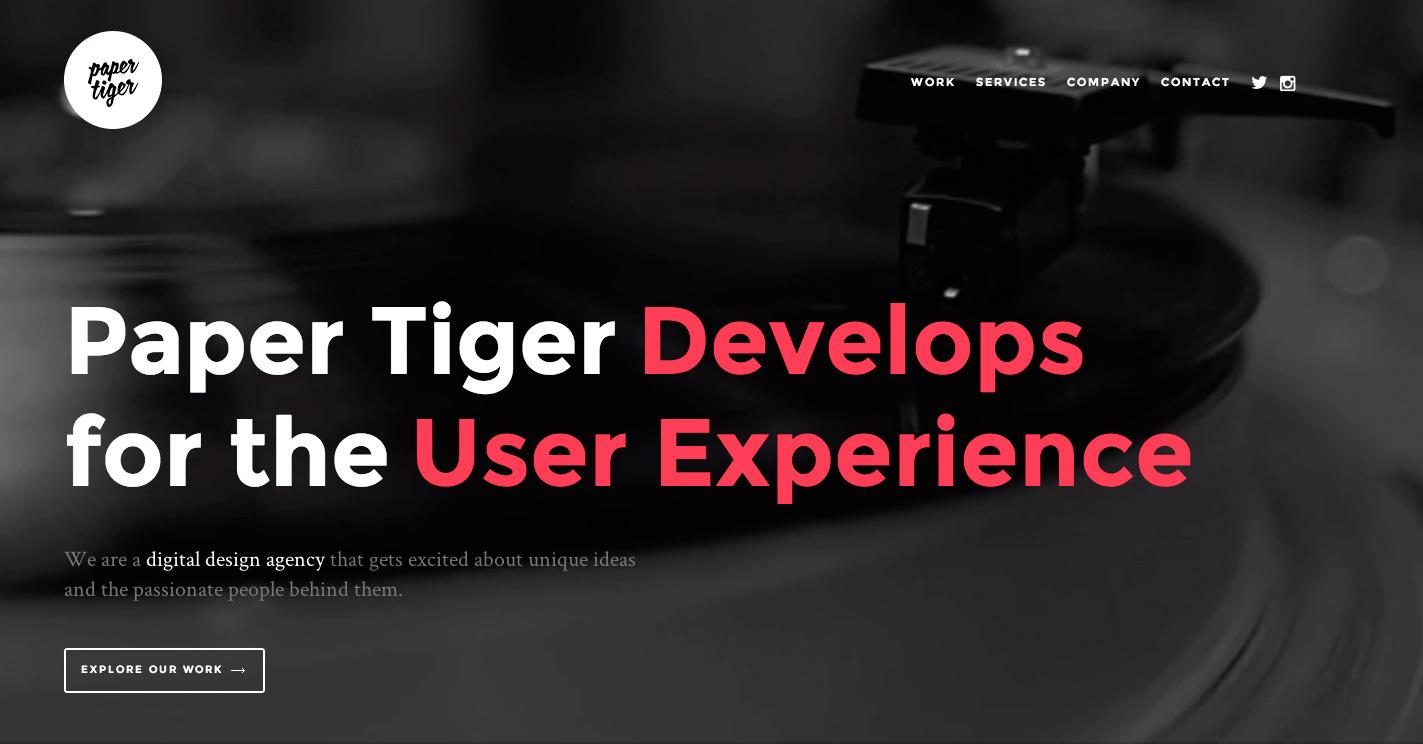 Web Design essay tiger reviews