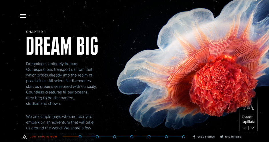 Aquatilis is a beautiful scrolling site that makes the most of modern web technologies