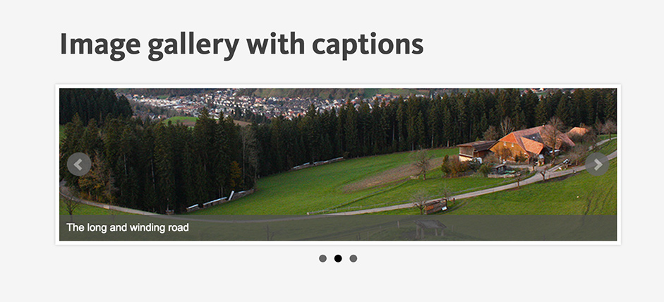 Image Gallery with Captions