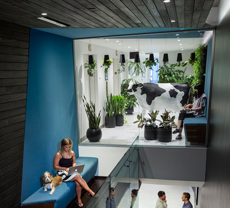 Droga5 - Wall Street Headquarters