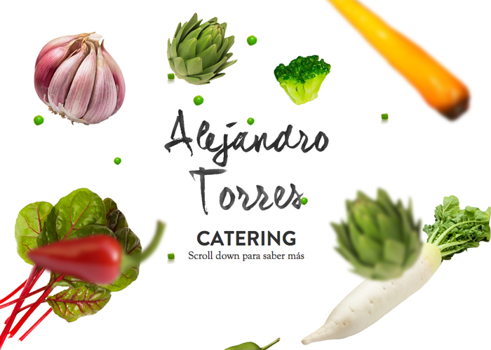 Alejandro Torres Catering