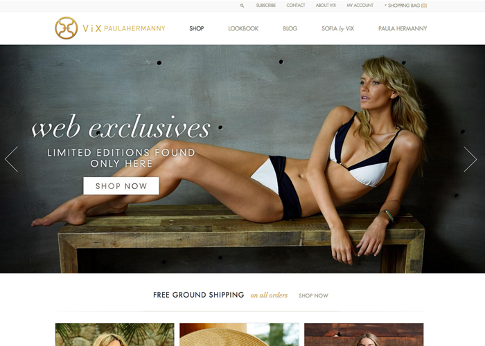 ViX Paula Hermanny | CSS Website