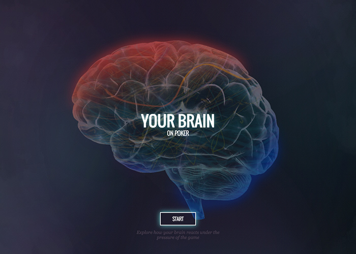 Your Brain on Poker | CSS Website