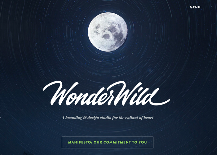WonderWild | CSS Website