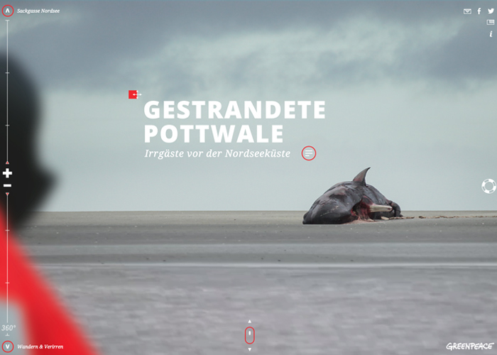 Awwwards website of the day: Greenpeace | Stranded Whales