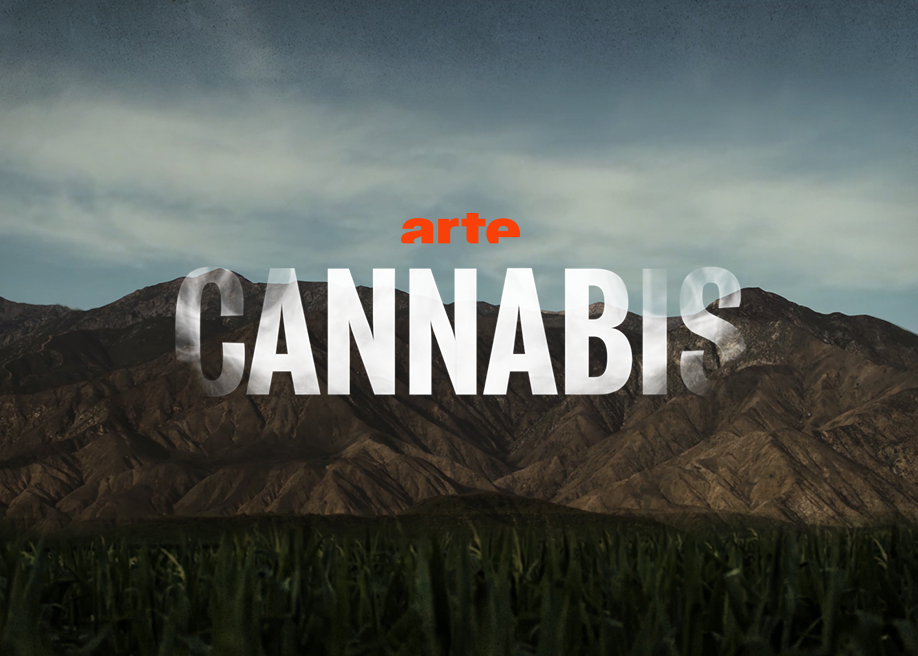 Awwwards website of the day: Cannabis