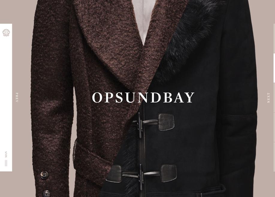 Awwwards website of the day: Opsundbay