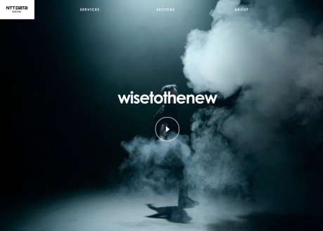 Wise To The New   CSS Website